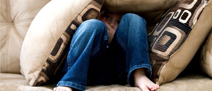 Strahovi i Fobije
